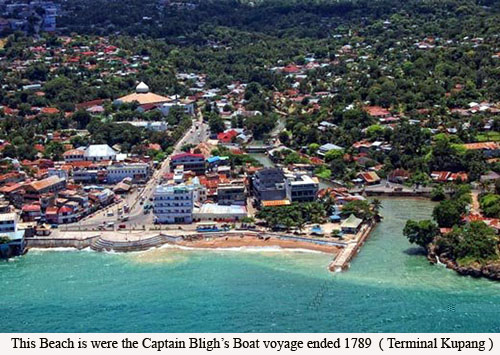 Captain Bligh Boat voyage ended 1789