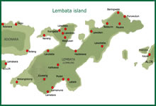 Map of Lembata island (Lomblen)